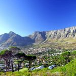 5 Table Mountain National Park To Visit in South Africa