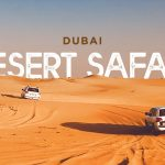The specialty of the morning, evening and overnight desert safari